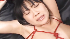 Saya Misaki , arousing Asian babe in hot bondage action