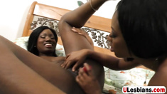 Sexy ebony girls are having epic lesbian sex in bedroom