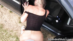 Lovely and horny MILF gets her pussy fucked hard