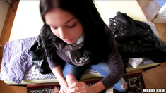 Beautiful Czech is paid to model her panties and fuck in public