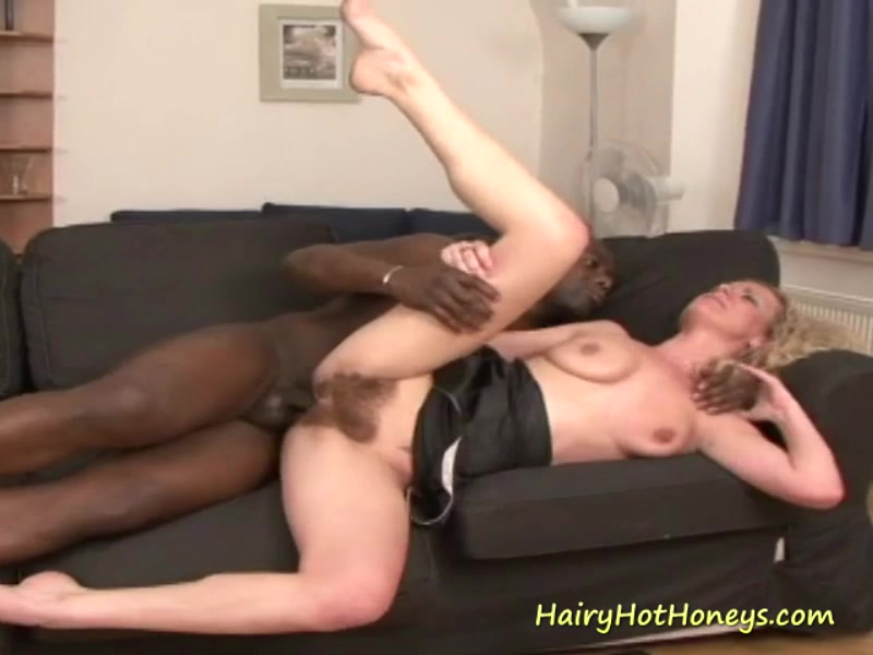 Black Cock Hairy Pussy Hd